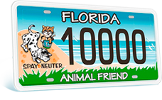 florida friend license_cropped