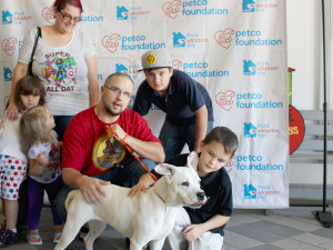 Pet Adoption Event Jacksonville