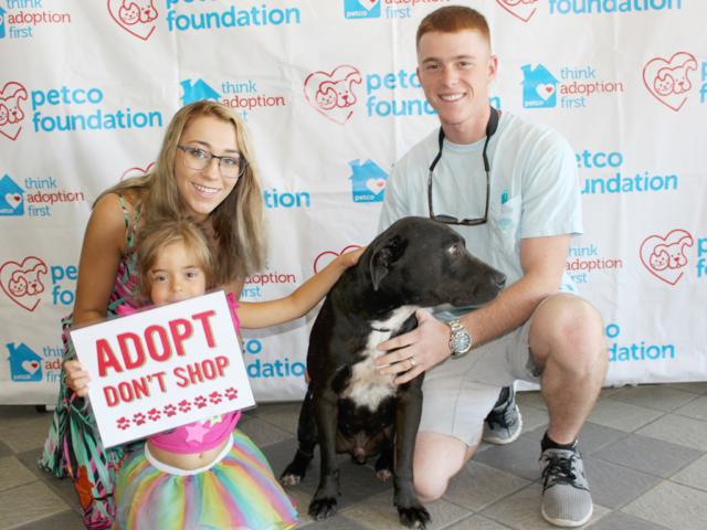 Pet Adoption Jacksonville