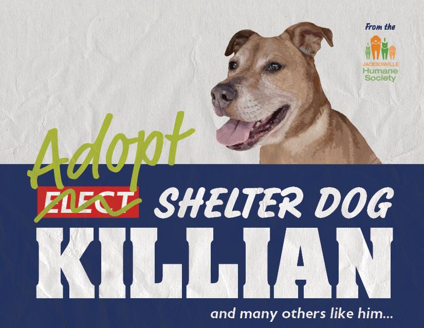 Killian from the Jacksonville Humane Society