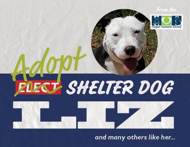 Liz from the Flagler Humane Society
