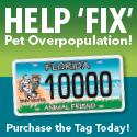 5101-FAF-Electronic-Marketing-Kit-Ads-1-31-146