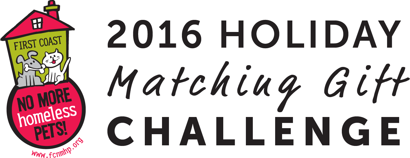 50k-matching-campaign-logo2