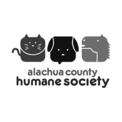 Adopt a Pet at the First Coast No More Homeless Pets Mega