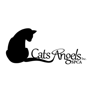 Cats Angels SPCA