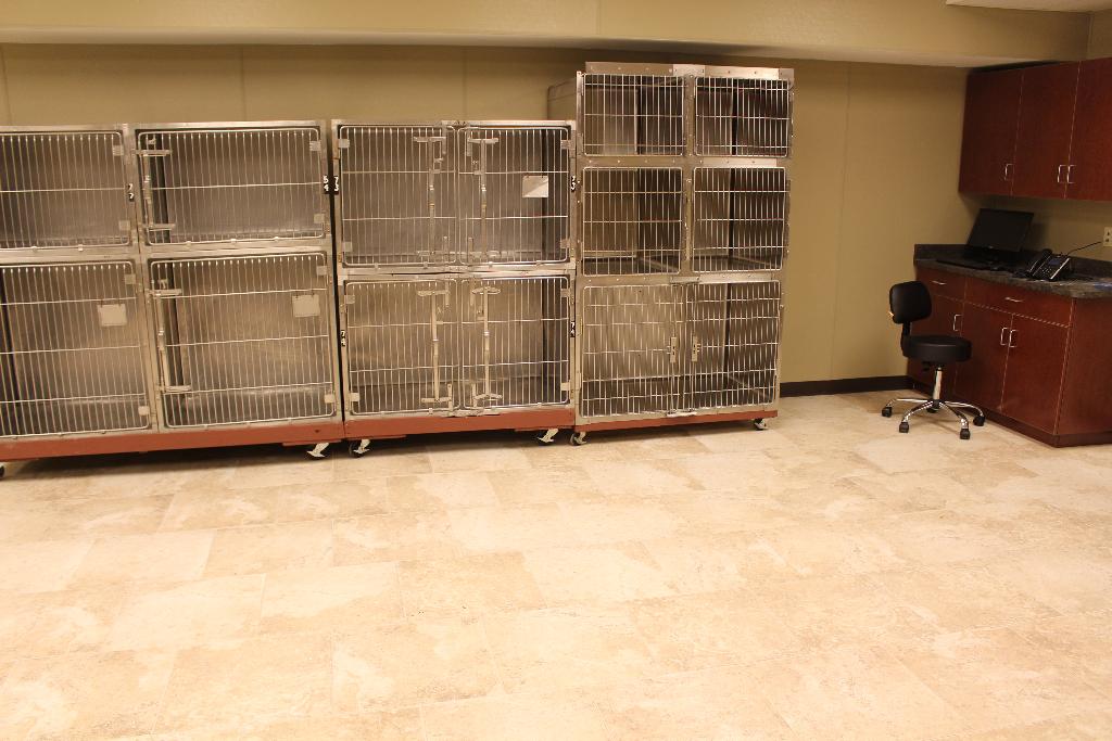 First Coast No More Homeless Pets Cassat