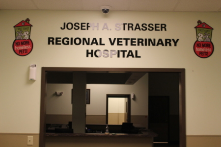 Jacksonville Low Cost Veterinary