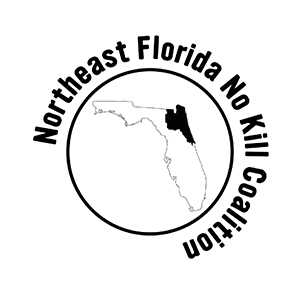 Northeast Florida No Kill Coalition