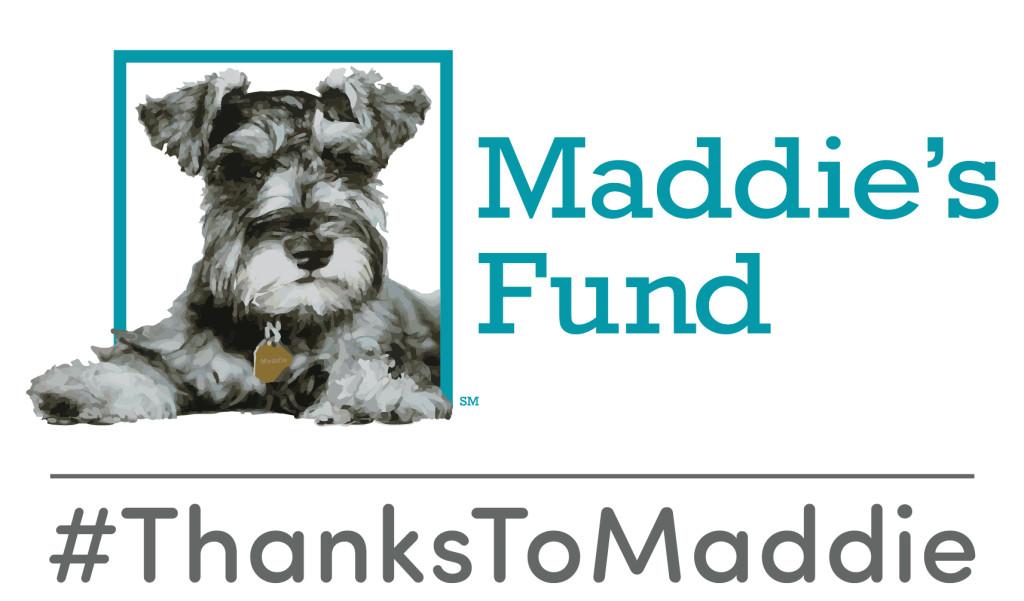 thanks-to-maddie-lockup